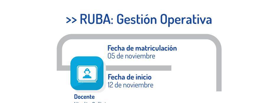 Capacitate en el sistema RUBA