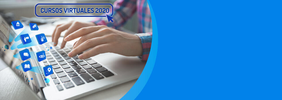 Capacitación Virtual 2020