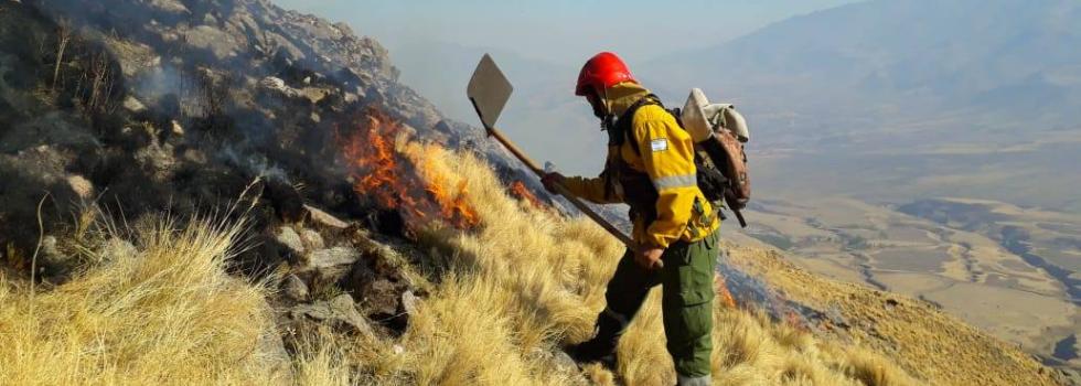 Curso virtual: Incendios Forestales